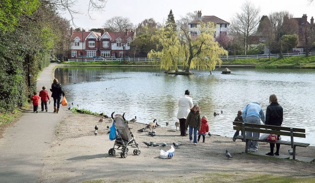 Chislehurst ponds
